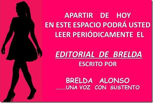 BRENDA EDITORIALES