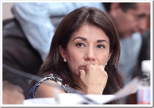 Josefina Salazar Báez (8)