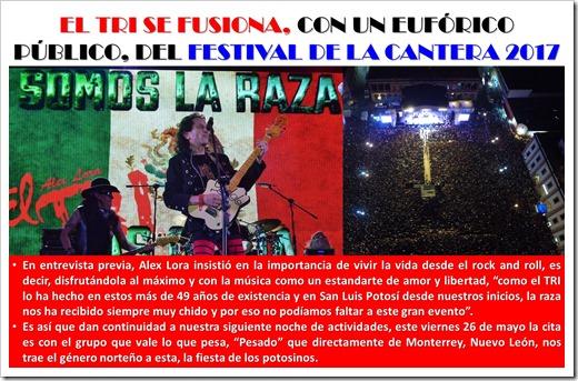 NOTICIAS EN LA CABECERA 2639