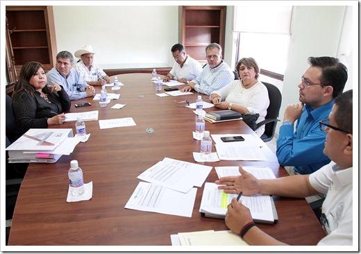 Comisión de vigilancia_0 (1)