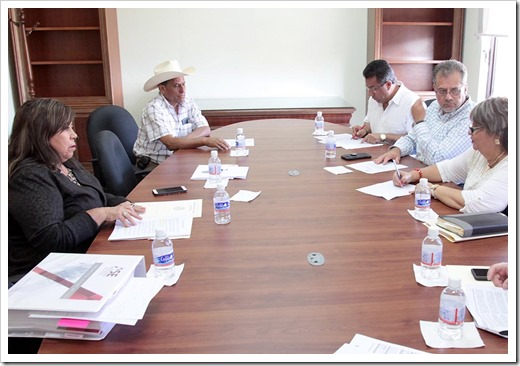 Reunión de la comisión de vigilancia_1